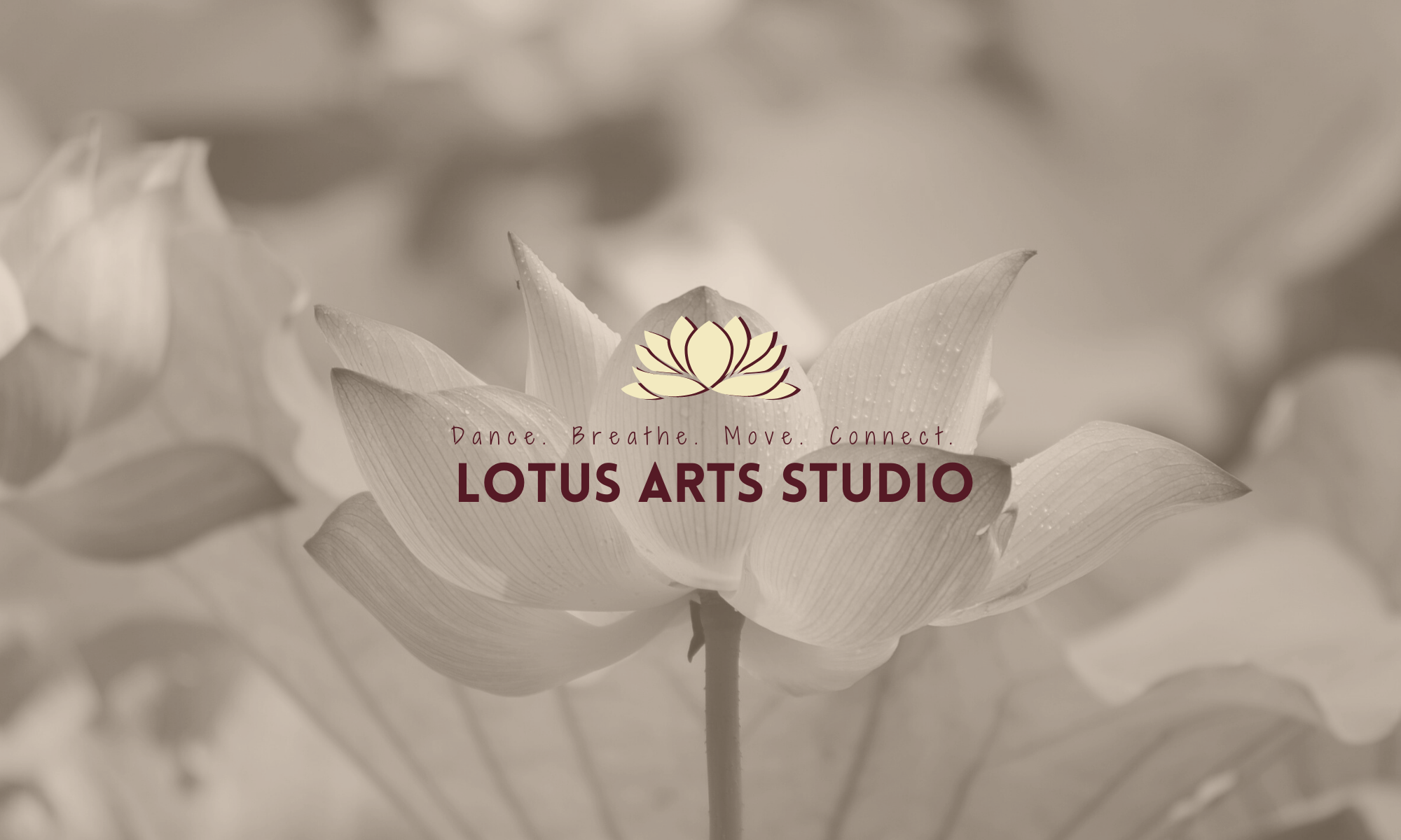 Lotus Arts Studio